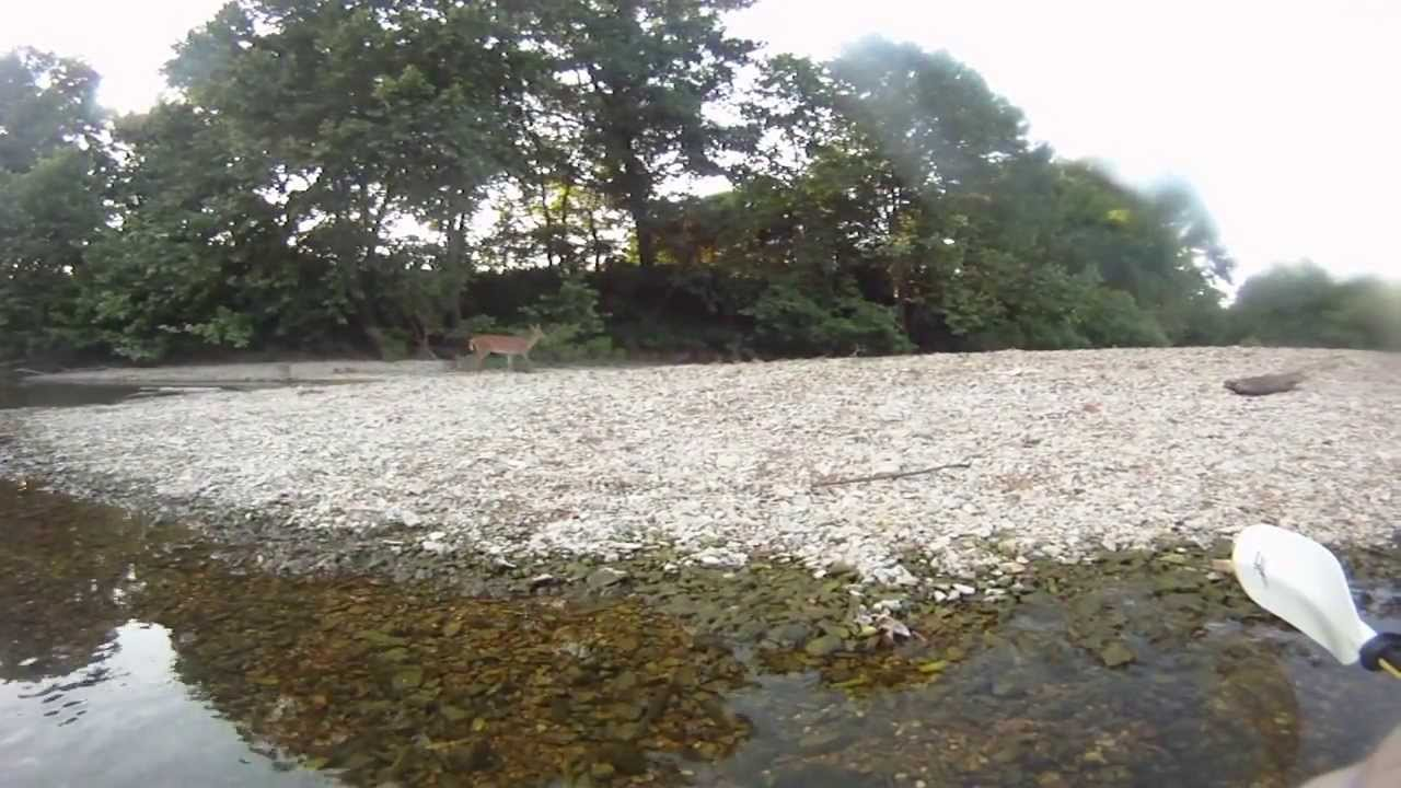 Kayaking The James River In Stone County Missouri YouTube