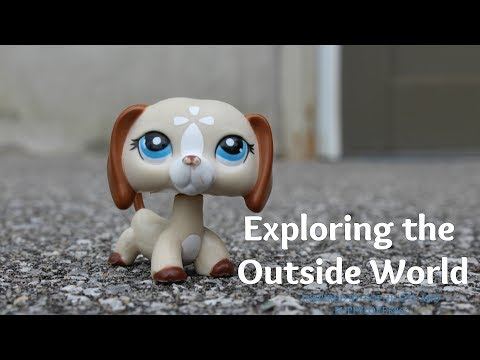 Lps: Exploring the Outside World (Escaping the Box)