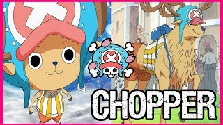 The Strawhat Pirates: TONY TONY CHOPPER