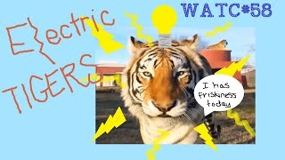 "download lagu ""electric Tigers""  Watc 58 gratis"