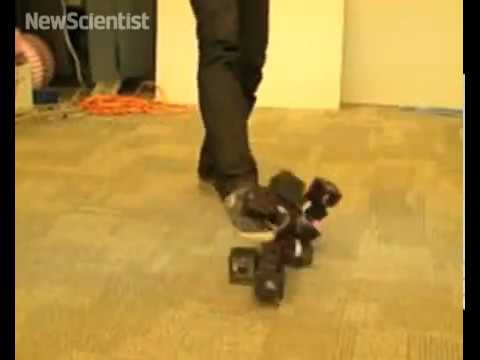 Modular robot reassembles when kicked apart