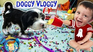 IT'S OREO🎵FUNnel Vision Doggy Vloggy! Who's Harder to Handle, Puppy or Baby? (After Christmas Vlog)