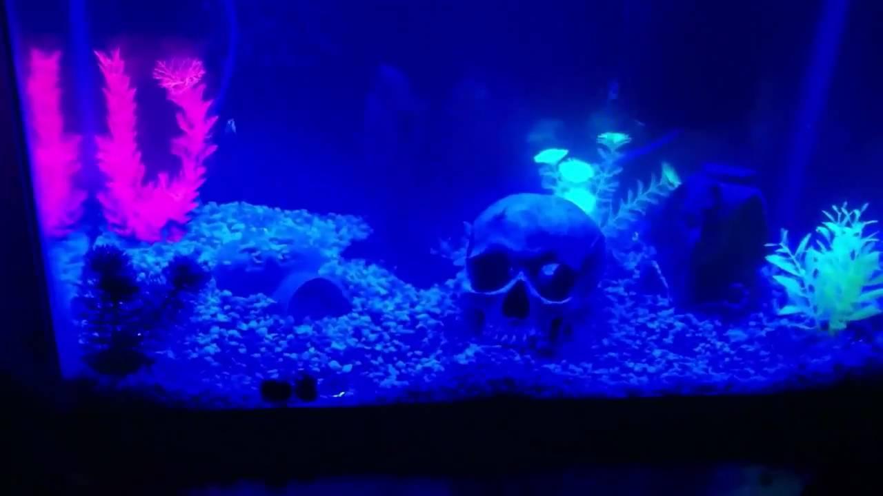 Diy led moonlight fish tank mod blue white light youtube for Blue light for fish tank