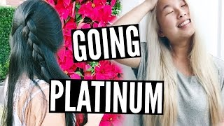 Virgin Asian Black Hair To Platinum Blonde ✂️ DIY | Alex Jayne