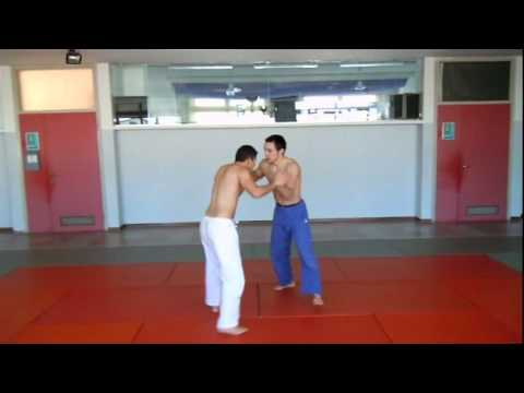 Judo Techniques - Freefight Grappling Image 1