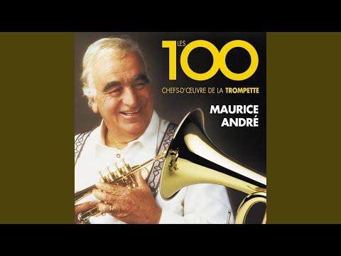 "Trumpet Concerto in D Major, G. 28 ""Estienne Roger 188"": I. Allegro"