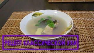 Рецепт классической ухи из головы рыбы - в домашних условиях