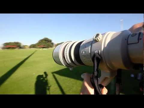 Canon EF 400mm LENS ile Örnek Fotoğraf Çekimleri