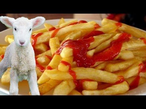 funny farm lamb fries