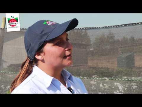 Familia Hortifrut Chanco - Carolina Ibarra