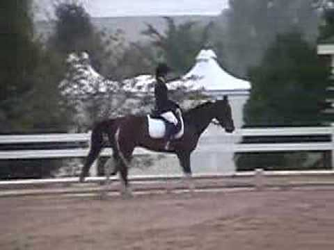 Mikimoto & Updated Jumping Video