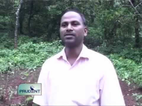 Prudent Media English News 21 August 12_Part 1