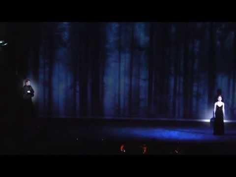 Ivan Ozhogin & Vera Sveshnikova - Wenn Ich Tanzen Will - Elisabeth