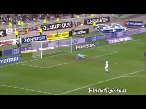 Bafetimbi Gomis - Welcome To Swansea - Goals 2013/14