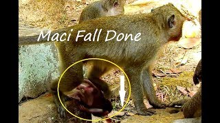 Million Breaking Heart & Pity Baby Mica Fall Down Cry Loudly cos DeeDee Catch away from mom.