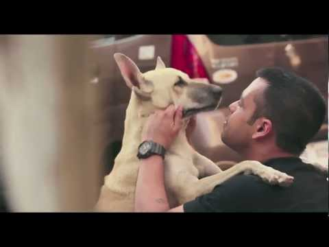 Khushiyaan Lutao Crazy Kehlao - Coca-Cola India (Call Me Crazy - TVC)