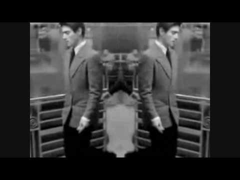 Frank Zappa - Yo Cats