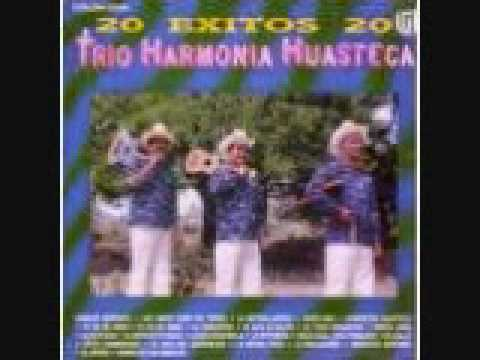 EL TORO REQUESON ARMONIA HUASTECA