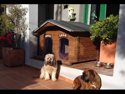 Las mejores casetas para perros de casita mascotas youtube for Casetas de resina para jardin