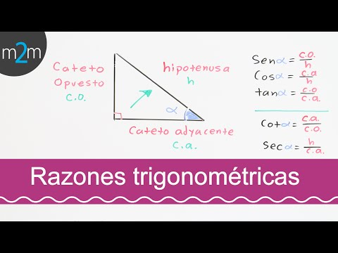 Funciones trigonométricas. Trigonometric functions