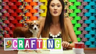 How to Craft a Duct Tape Pet Treat Bag