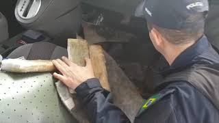 PRF em Ponta Porã/MS descobre 137 kg de maconha escondidos em assoalho de carro