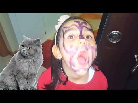 bu kediden nasıl kurtulacağız...