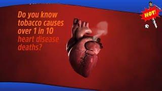 ✅ Confronterende video toont wat roken doet met je hart
