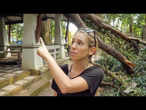 Koh Samui nach Tropensturm Pabuk • Thailand • Weltreise | VLOG #413
