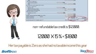 What are non refundable tax credits?