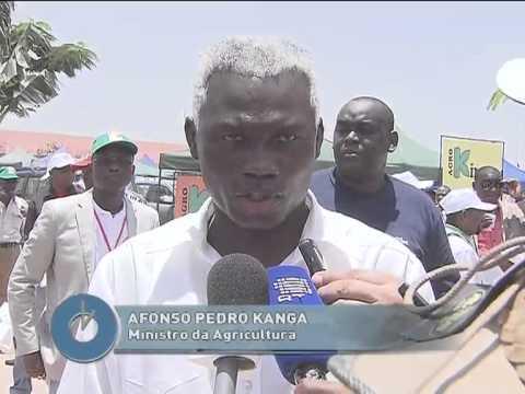 Executivo quer relançar sector da investigação agrária | Jornal da Hora | TV Zimbo |