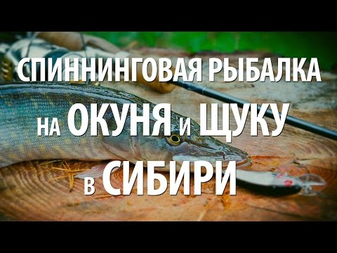 моя рыбалка на щуку в сибири