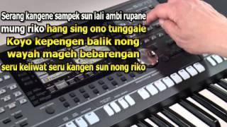 Selendang Angenan Demy - Vita Alvia Karaoke Koplo