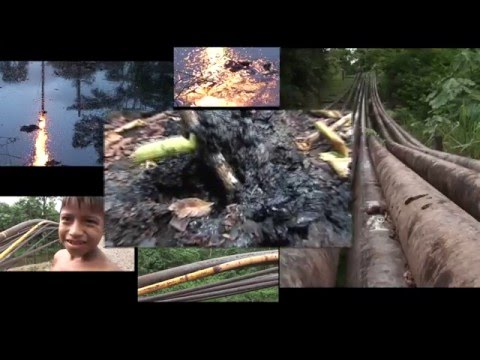 Help Ecuador oil spill victims to get Chevron to pay for the damage