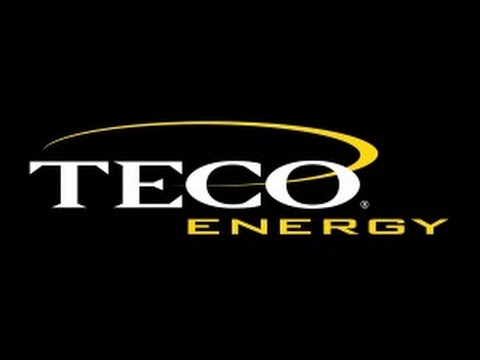 TECO Energy Seeks Sale