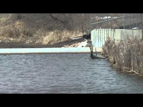 Iowa Great Lakes Electric Fish Barrier Free Fishing Video Species  by WillCFish Tips and Tricks.