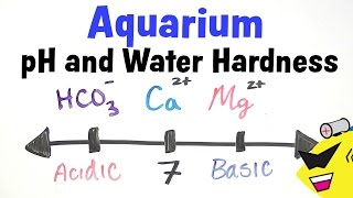 Aquarium pH and Water Hardness
