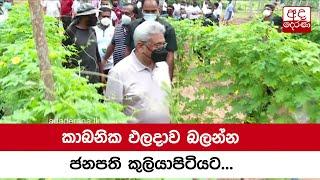 President goes to Kuliyapitiya to visit organic farms