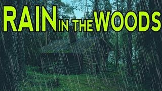 Rain Sounds In The Woods Ambient Noise For Sleep Relaxation And Studying Aultizzz Day 9