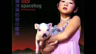 Watch Spacehog Anonymous video