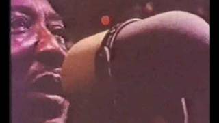 Muddy Waters Hoochie Coochie Man 1970