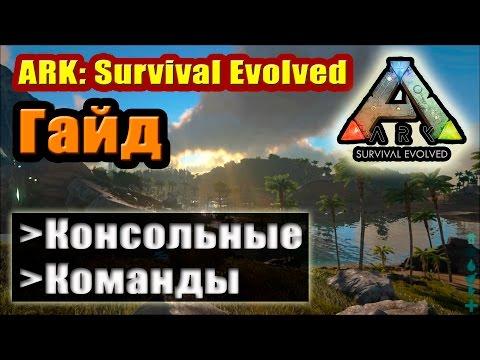 ARK: Survival Evolved. Консольные команды.