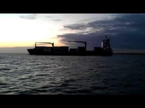 Dolphins riding ship energy.m4v