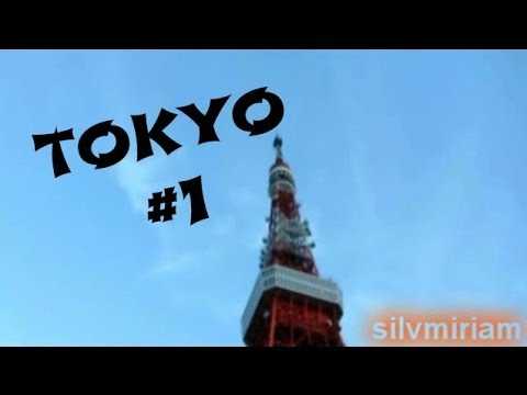 Tour del Giappone – 1° giorno – Tokyo