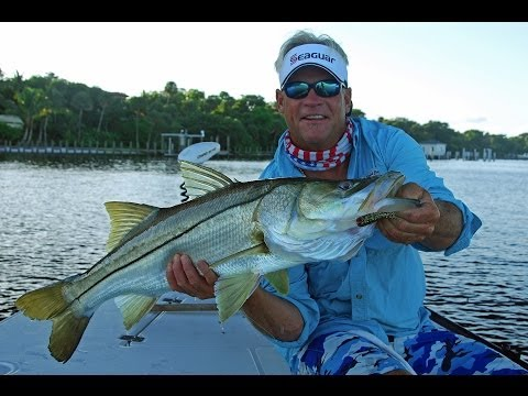 Addictive Fishing: Chokoloskee Linesiders - SNOOK fishing in the Everglades