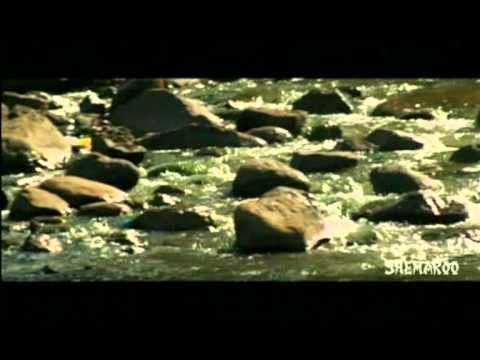 Tya Ratri Paus Hota - Part 2- Amruta Subhash Subodh Bhave &...