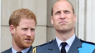 La Verdad Revelada Sobre La Disputa Entre El Príncipe William Y El Principe Harry