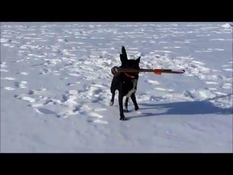 Ice Fishing 2012 New Hampshire