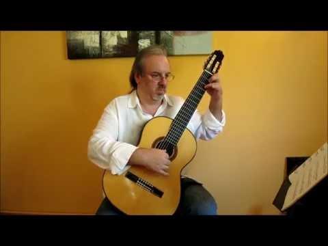 Фердинандо Карулли - Opus 333 No 13