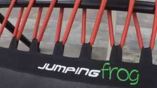 Fitness Jumping Frog Radom Sylwia